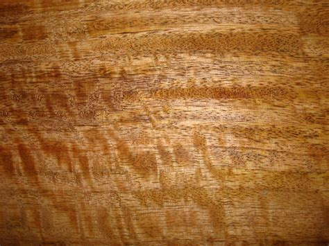 woodworking photos mango wide planed and sanded wood for shelves