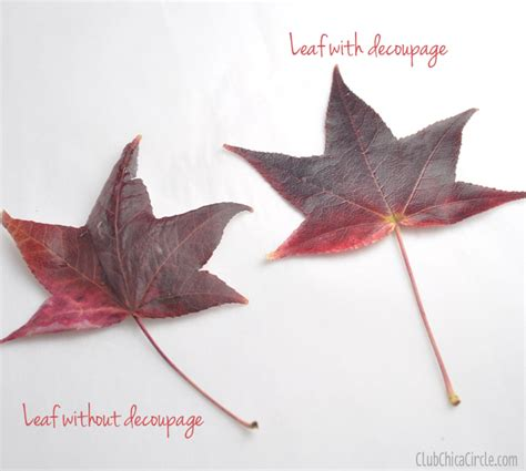 decoupage with leaves fall leaf decoupaged pumpkin decorating club chica