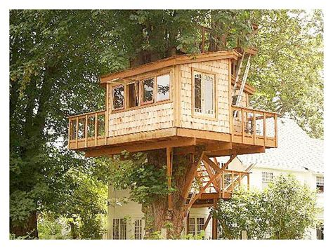 house designs free unique plans for a tree house new home plans design