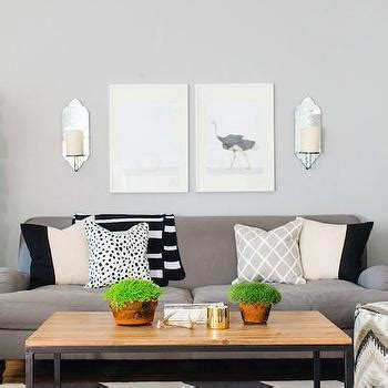 paint colors that go with zebra print the animal print shop design decor photos pictures