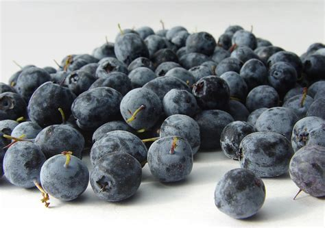 acai berry acai berry best to use as juice and energy drinks