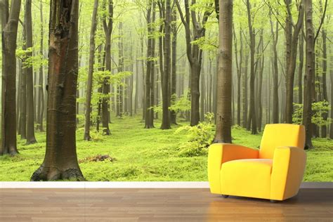 what are wall murals wallpaper decals and wall murals trees edition
