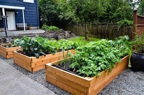 how to make your own vegetable garden green gardening tips green gardening tips how to make your