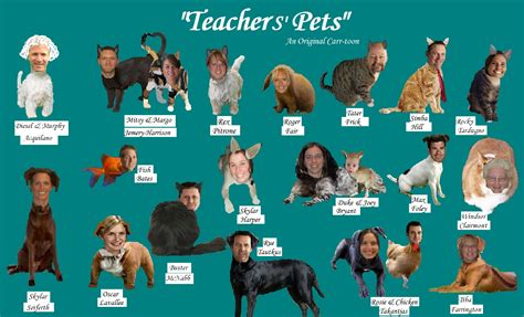 teachers pet 301 moved permanently