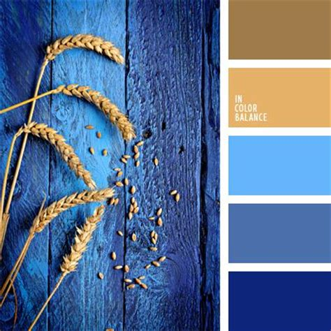 royal color scheme 25 best ideas about royal blue colour on