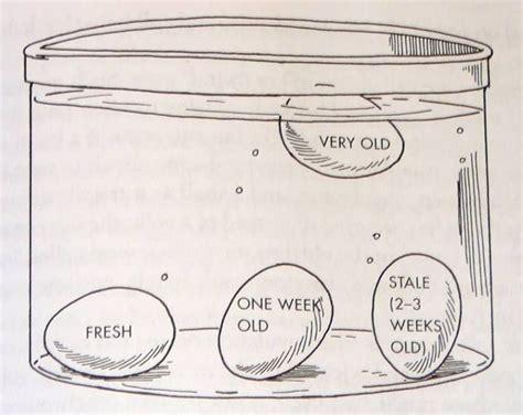 Egg Float Or Sink by Egg Test Sink Good Float Bad Favorite Recipes Pinterest