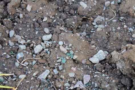 rocky soil common sense country