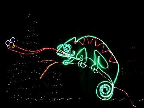 park zoo lights zoolights at lincoln park zoo
