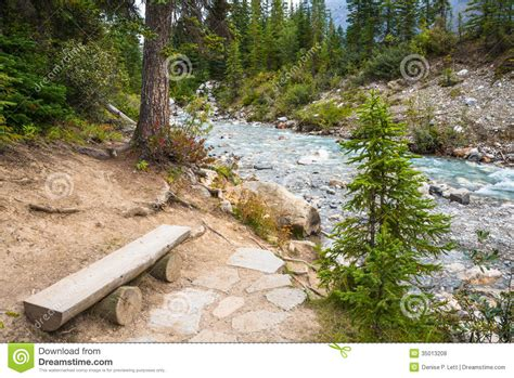 Northwest Floor Plans mountain river forest landscape royalty free stock photos