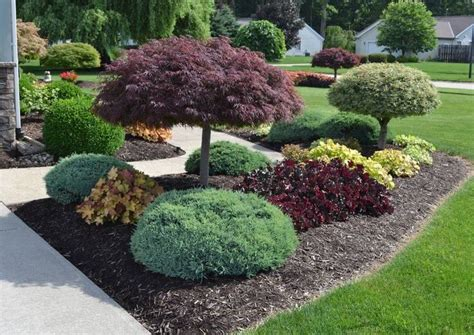 17 best images about landscaping ideas on 17 best landscaping ideas on front landscaping