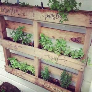 herb wall garden herb wall pallet garden for the backyard