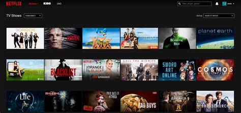 shows on netflix image gallery netflix shows 2015