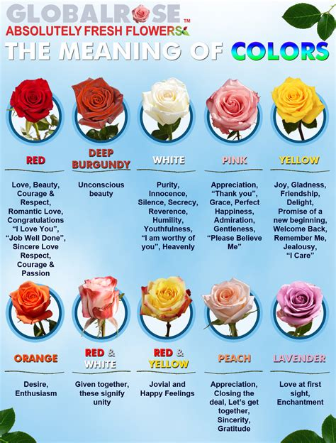 sherwin williams paint store albuquerque nm what color roses ktrdecor