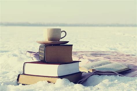 picture books in winter a snowy reading quest great mg ya books to read in the
