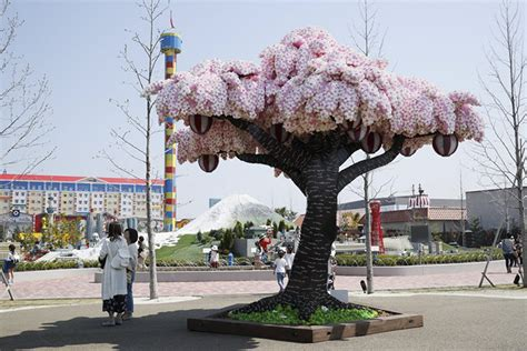 it took 6 700 hours to finish an 800 000 lego cherry blossom tree and now it s a guinness