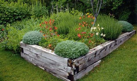 Alan Titchmarsh on creating an alpine garden   Garden