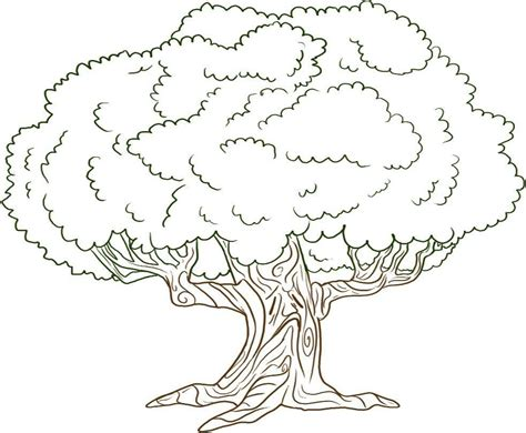 tree colouring in pages free printable tree coloring pages for