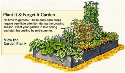 salsa garden layout vegetable garden planner layout design plans for small