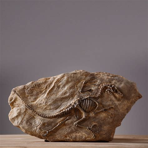 fossil crafts for fossil craft promotion shop for promotional fossil craft