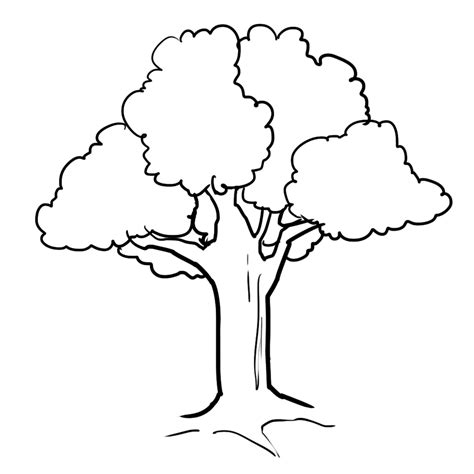 tree colouring in pages awesome trees coloring pages 34 about remodel free