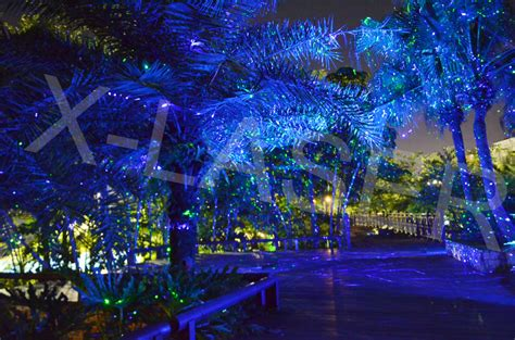 tree light projector light green blue moving projector decorative laser