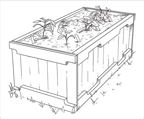 vegetable garden drawing garden drawing pictures 3d drawing