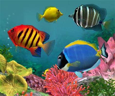 les poissons tropicaux