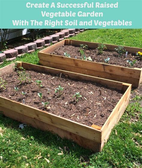 best soil for raised vegetable garden beds soil for raised vegetable garden beds 28 images 301