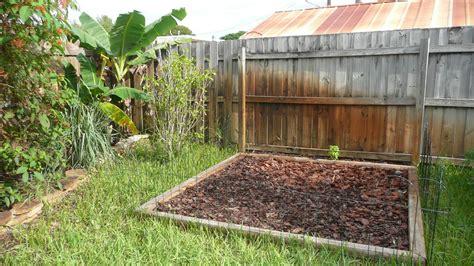 vegetable gardening in south florida gardening south florida style south florida vegetable