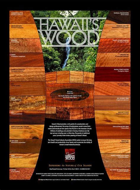 woodworking hawaii wood id hawaiian mystery wood bladeforums