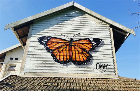 spray painting in kzn giffy duminy artist butterfly spray paint