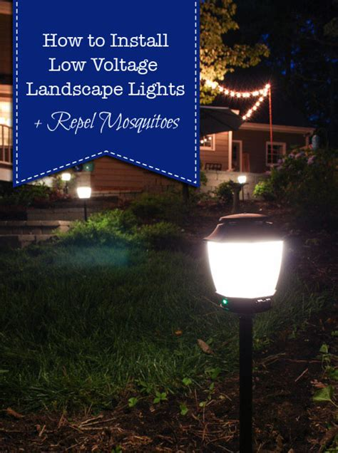 installing low voltage landscape lighting how to install landscape lights and repel mosquitoes