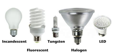 types of light bulbs different types of lighbulbs thinglink