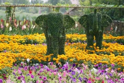 beautiful flower garden photos world beautiful flower gardens beautiful flower gardens