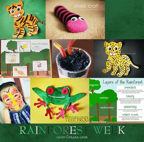 rainforest crafts for rainforest on dioramas rainforest