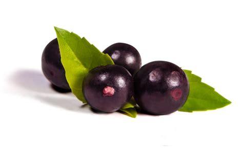acai berry acai the superfruit of marketing