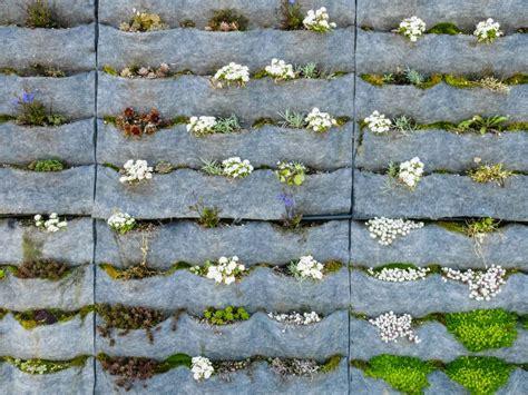 decorar jardines con rejas 20 ideas sorprendentes para hacer jardines verticales en