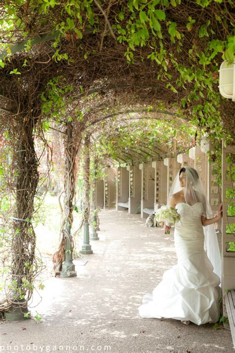 wedding at botanical garden tara jason married in atlanta botanical gardens