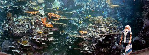 purchase tickets aquarium