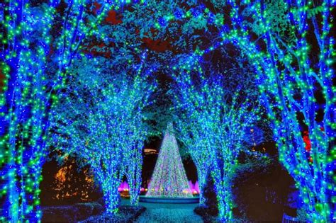 botanical garden of lights gorgeous lights at atlanta botanical gardens gac