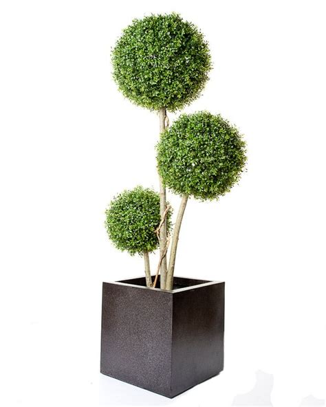 3 foot trees 3 foot trees artificial 28 images 3 foot 4 foot and 5