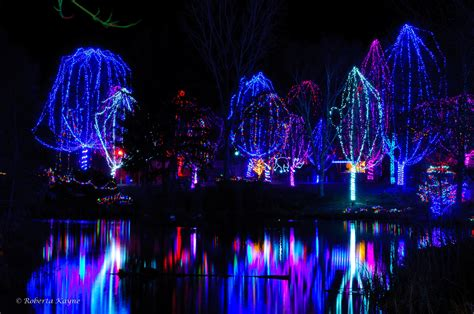 zoo lights ticket prices zoo lights 2012 discount tickets