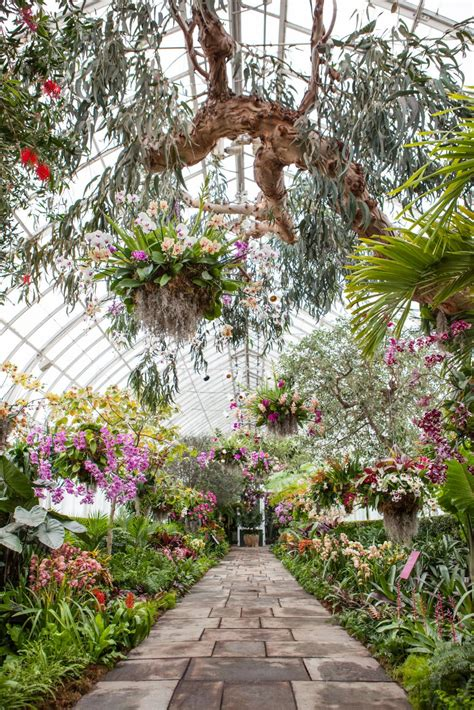 greenhouse chandelier orchid chandeliers hgtv