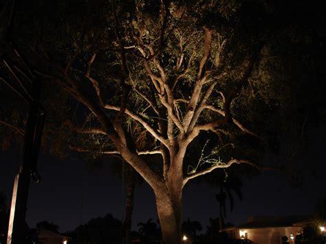 outdoor tree lighting nitelites of southeast michigan to brighten home