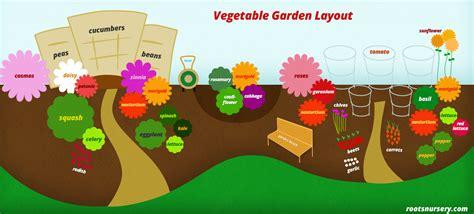 companion flowers for vegetable garden companion planting vegetable garden layout