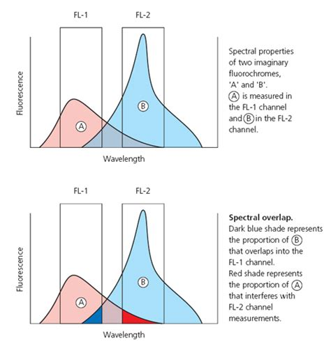 flow cytometry compensation fluorescence compensation
