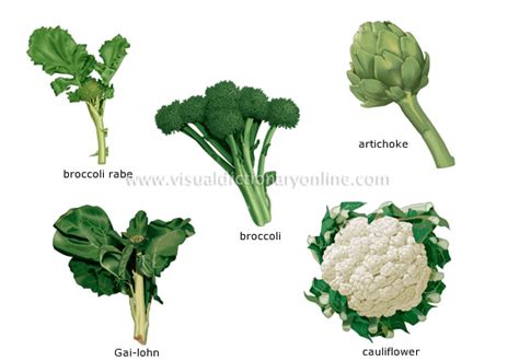 plant food that comes with flowers food kitchen food vegetables inflorescent