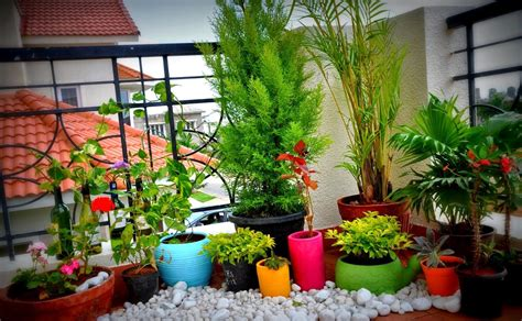small terrace garden design ideas small space gardening 20 clever ideas to grow in a