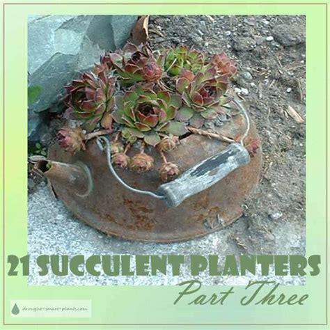 unique planters for succulents 21 unique succulent planters page 3 there s still time