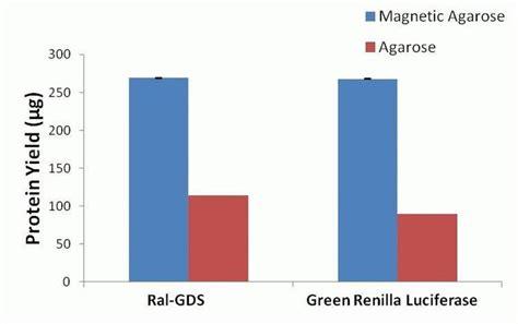 gst agarose glutathione magnetic agarose thermo fisher
